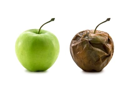 Is Your Business Green and Growing or Ripe and Rotting?